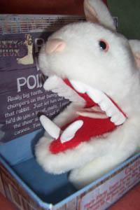 No le toque la nariz mientras le llama 'conejito bonito cuchi-cuchi'. Ha resultado fatal en la mayoría de casos
