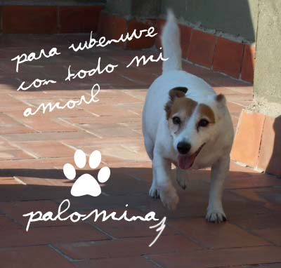 Lametones de amor, Palomina